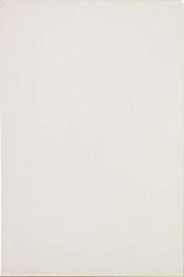 Bílý obklad W2030, 20x30 cm